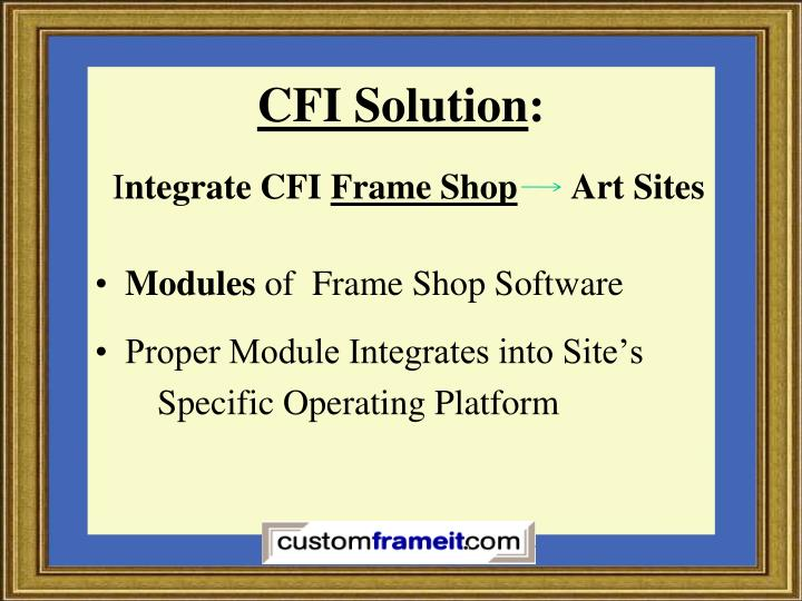 CFI Solution