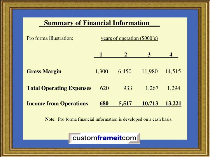 Summary of Financial Information___