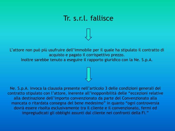 Tr. s.r.l. fallisce