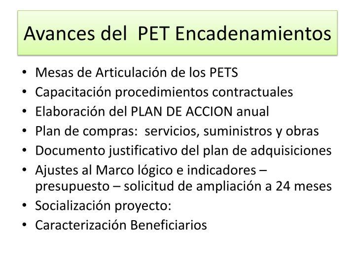 Avances del  PET Encadenamientos