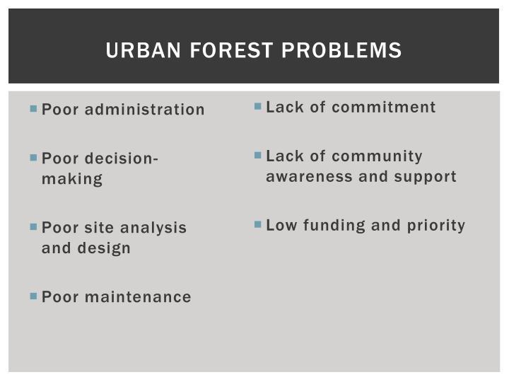 Urban Forest Problems