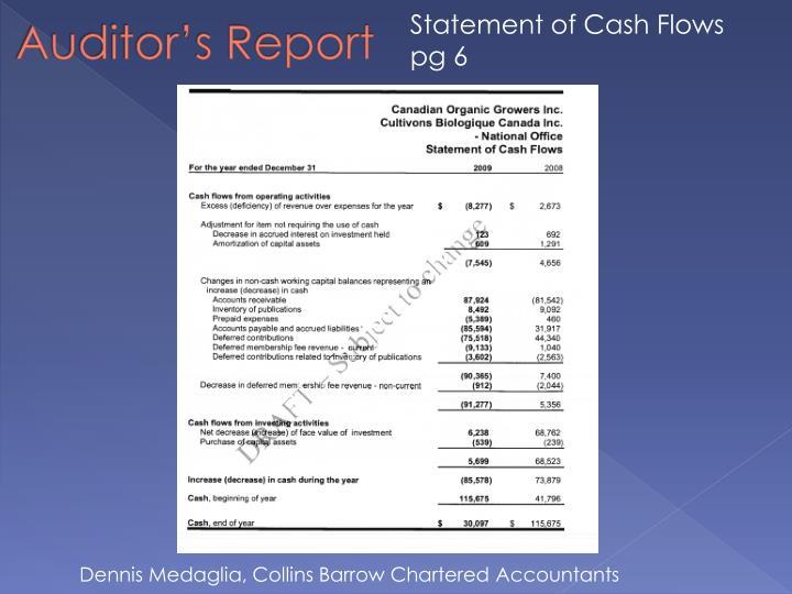 Statement of Cash Flows pg 6