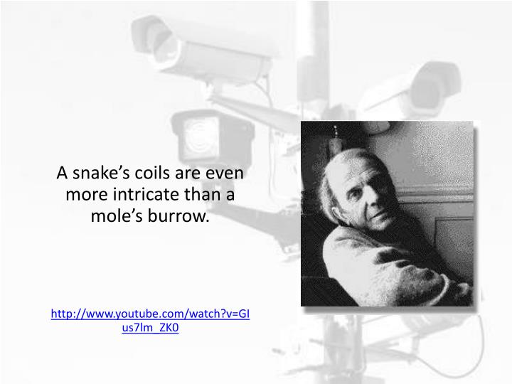A snake's coils are even more intricate than a mole's burrow.