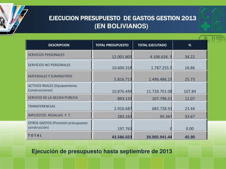 EJECUCION PRESUPUESTO  DE GASTOS GESTION 2013