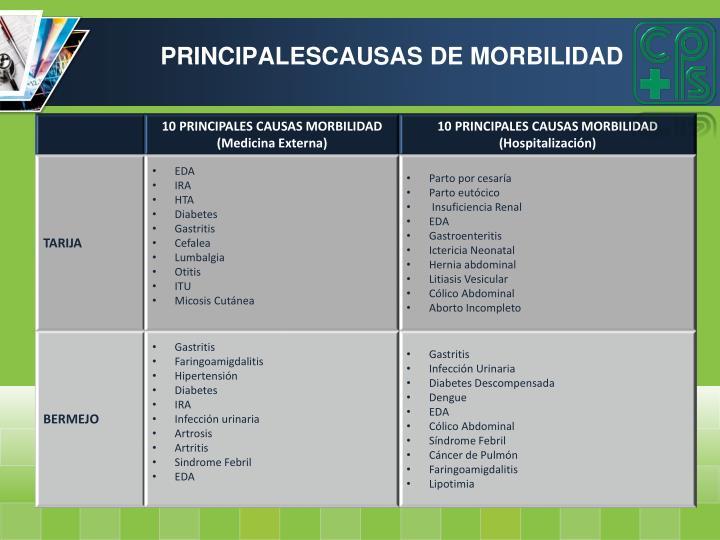 PRINCIPALESCAUSAS DE MORBILIDAD