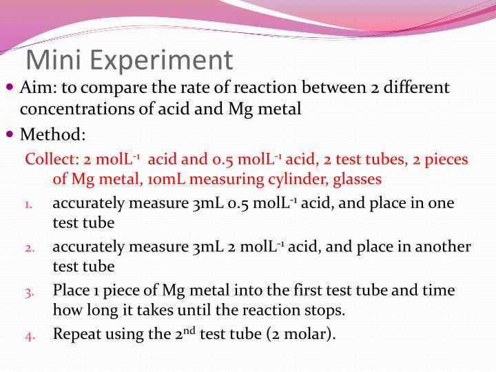 Mini Experiment