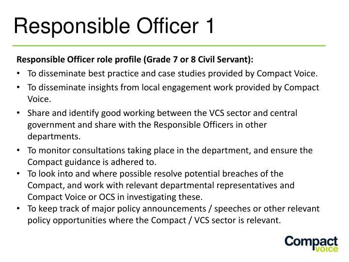 Responsible Officer role profile (Grade 7 or 8 Civil Servant):