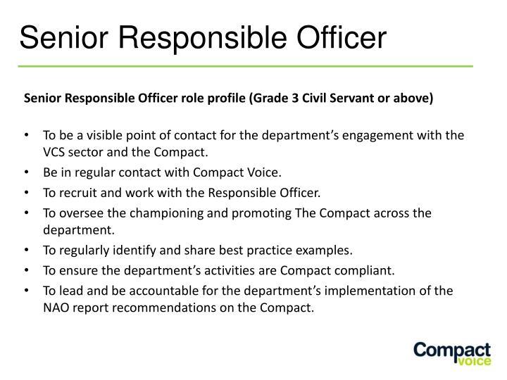 Senior Responsible Officer role profile (Grade 3 Civil Servant or above)