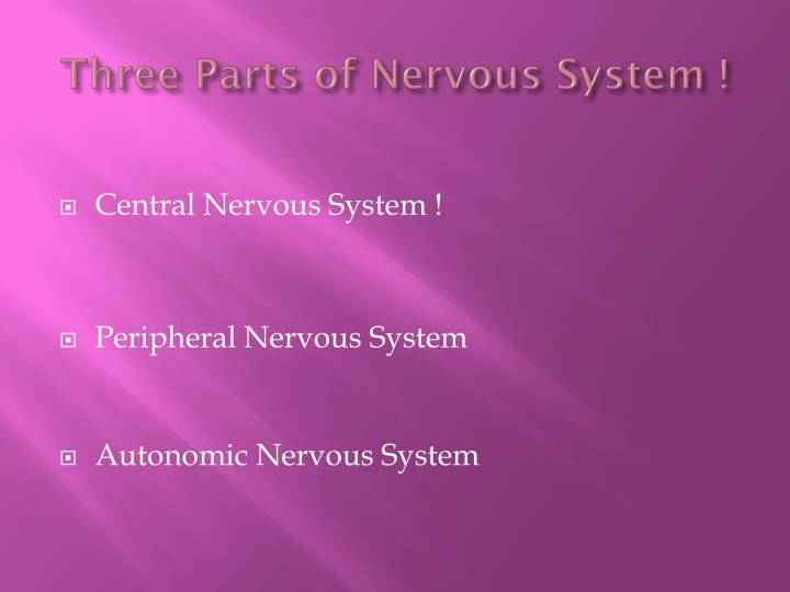 Three Parts of Nervous System !