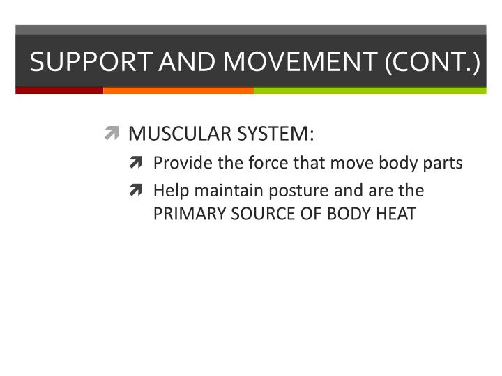 SUPPORT AND MOVEMENT (CONT.)