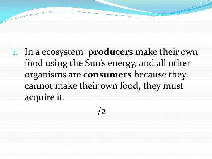 In a ecosystem,