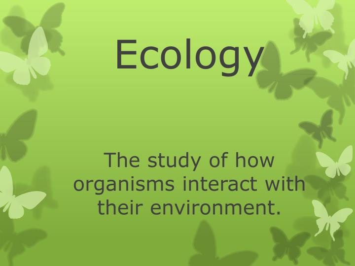 Ecology the study of how organisms interact with their environment