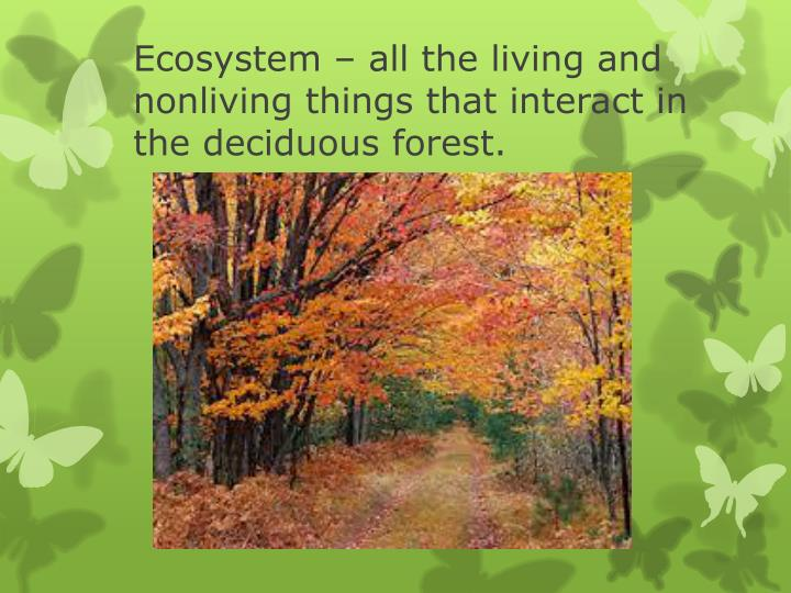 Ecosystem – all the living and nonliving things that interact in the deciduous forest.