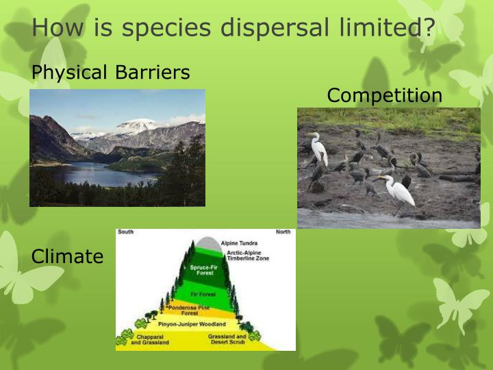How is species dispersal limited?