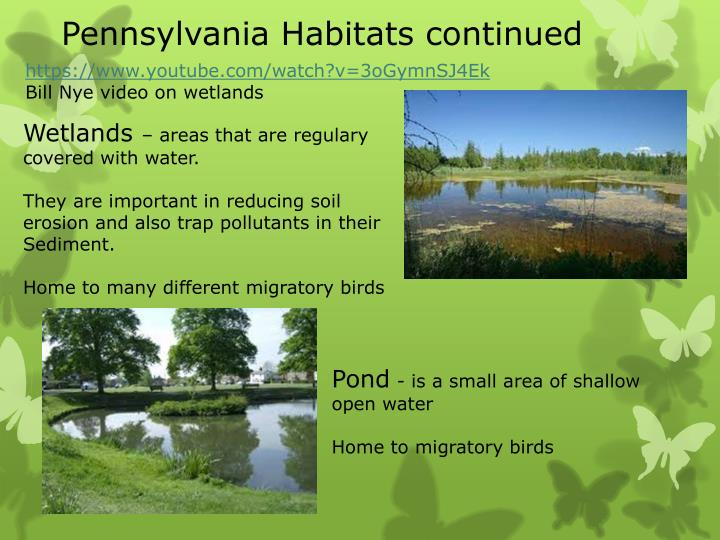 Pennsylvania Habitats continued