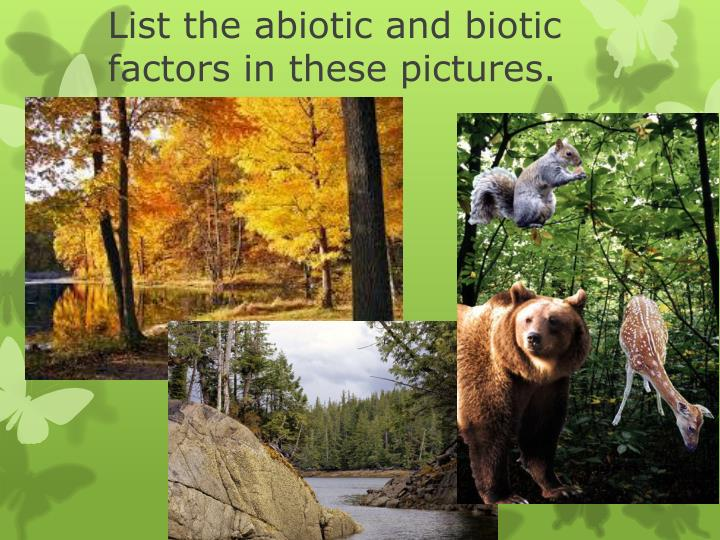 List the abiotic and biotic factors in these pictures.