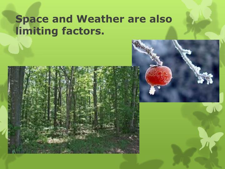 Space and Weather are also limiting factors.