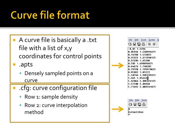 Curve file format