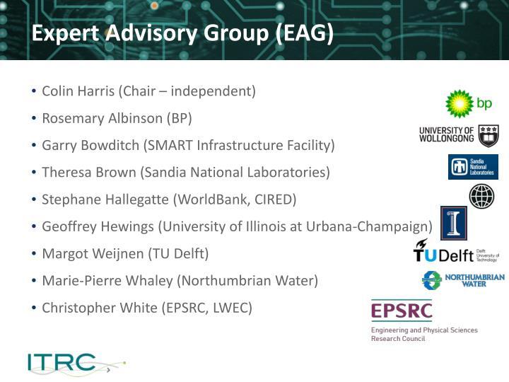 Expert Advisory Group (EAG)