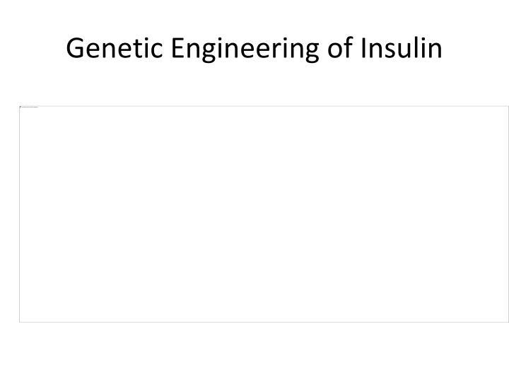 Genetic Engineering of Insulin
