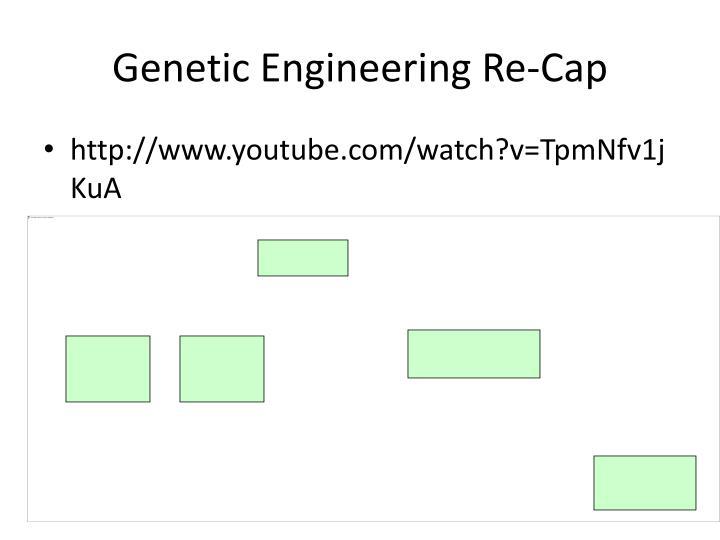 Genetic Engineering Re-Cap