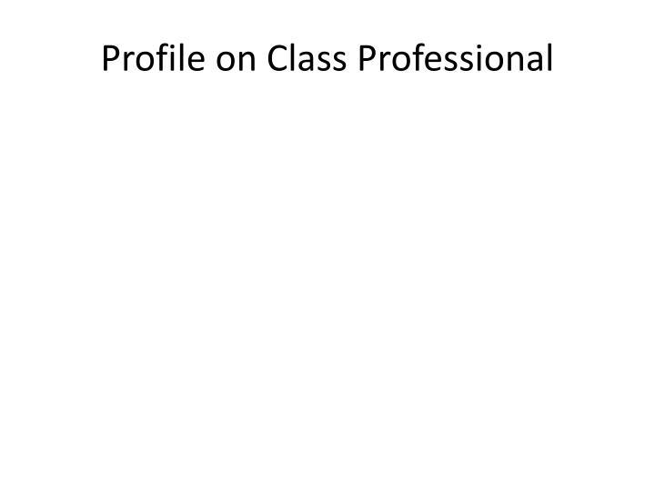Profile on Class Professional