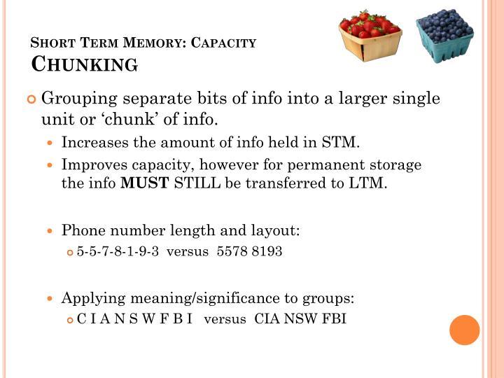 Short Term Memory: Capacity