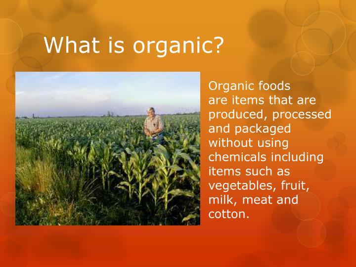 Is Food Organic Or Inorganic