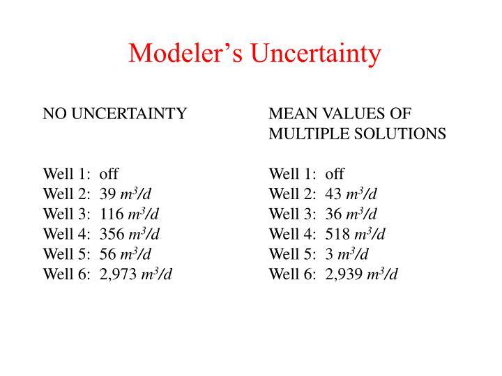 Modeler's Uncertainty