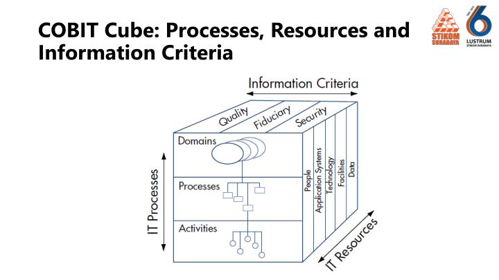 COBIT Cube: Processes, Resources and Information Criteria