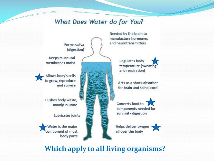 Which apply to all living organisms?