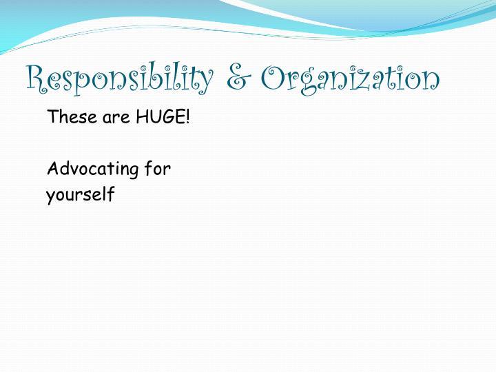 Responsibility & Organization