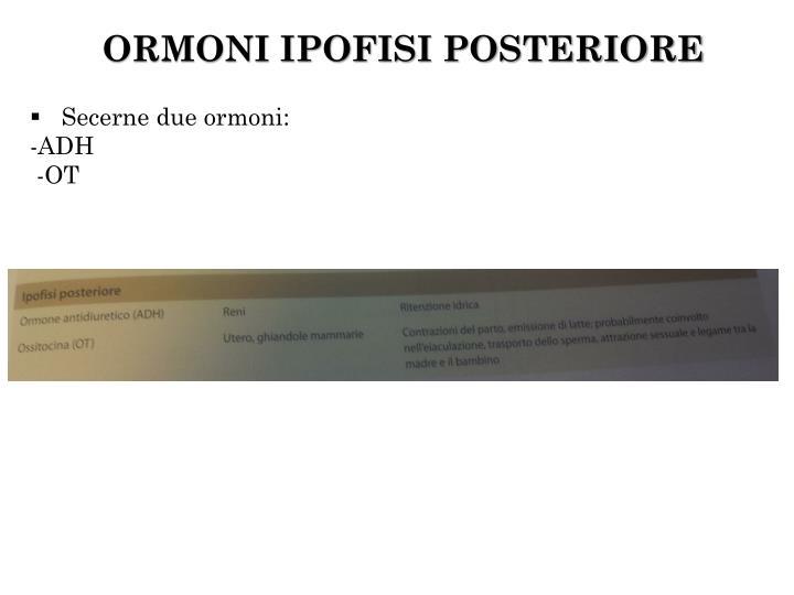 ORMONI IPOFISI POSTERIORE
