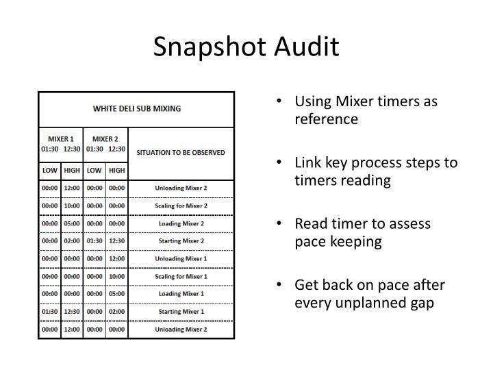 Snapshot Audit