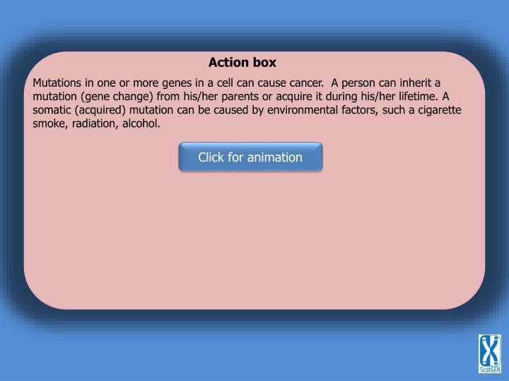 Action box
