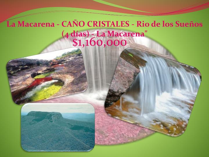La Macarena - CAÑO CRISTALES - Rio de los Sueños (4