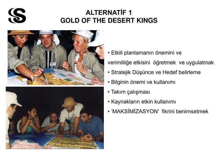 ALTERNATİF 1