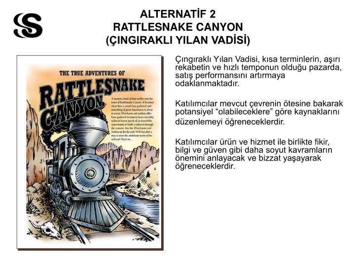 ALTERNATİF 2