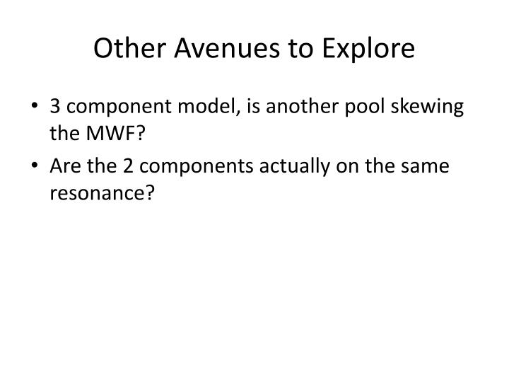 Other Avenues to Explore