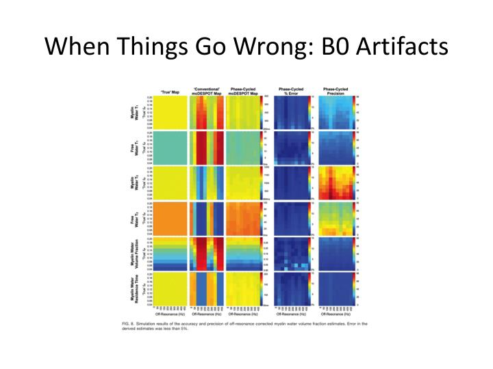 When Things Go Wrong: B0 Artifacts