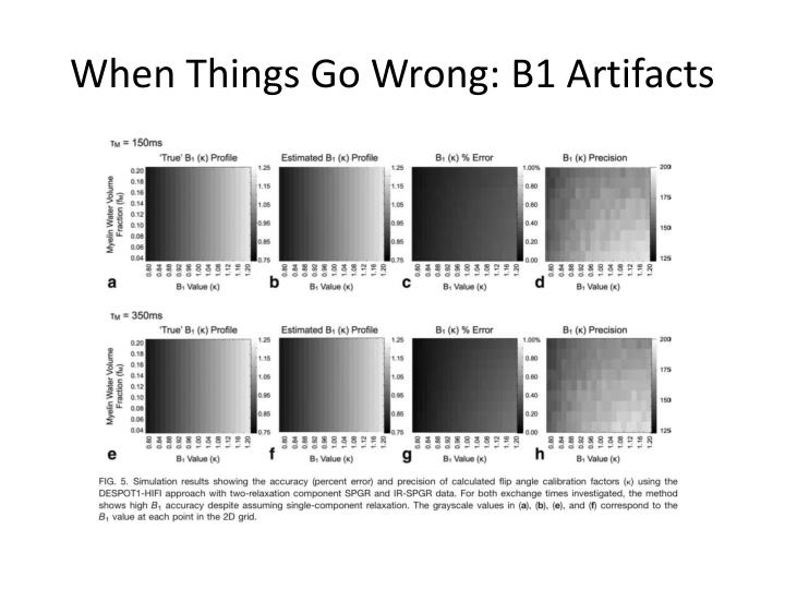 When Things Go Wrong: B1 Artifacts