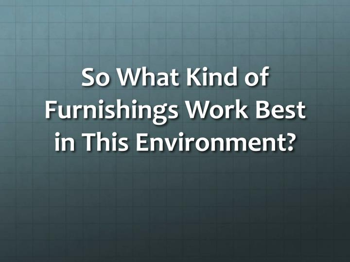 So What Kind of Furnishings Work Best in This Environment?