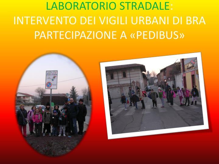 LABORATORIO STRADALE