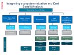integrating ecosystem valuation into cost benefit analysis