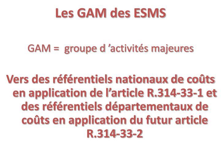 Les GAM des ESMS
