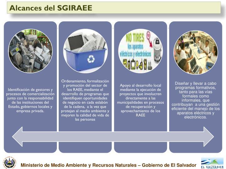 Alcances del SGIRAEE