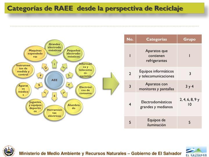 Categorías de RAEE  desde la perspectiva de Reciclaje