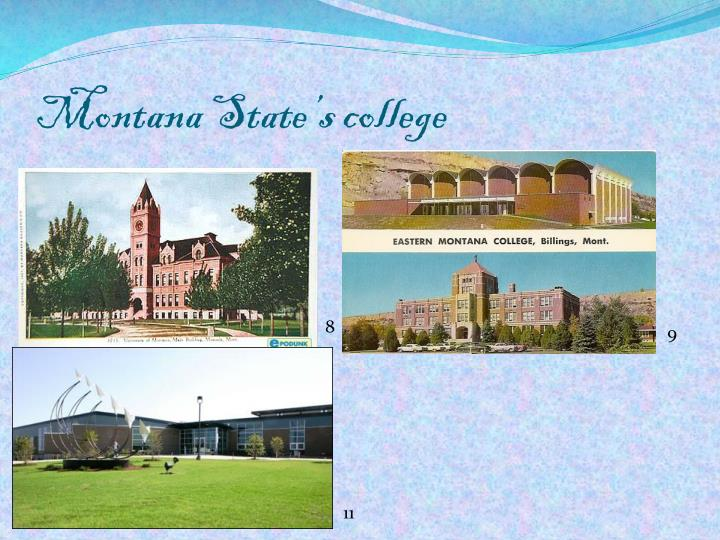 Montana State's college
