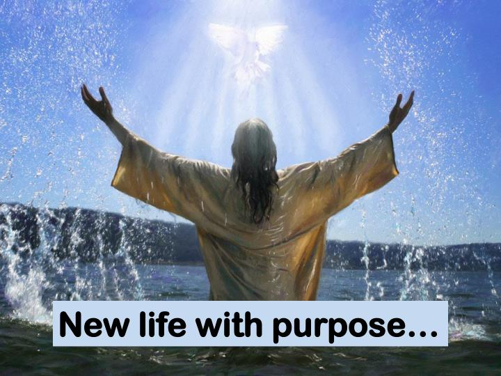 New life with purpose…