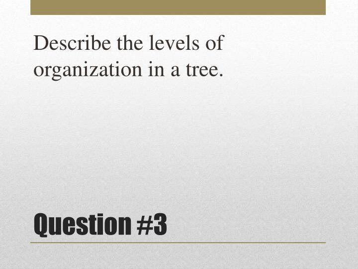 Describe the levels of organization in a tree.